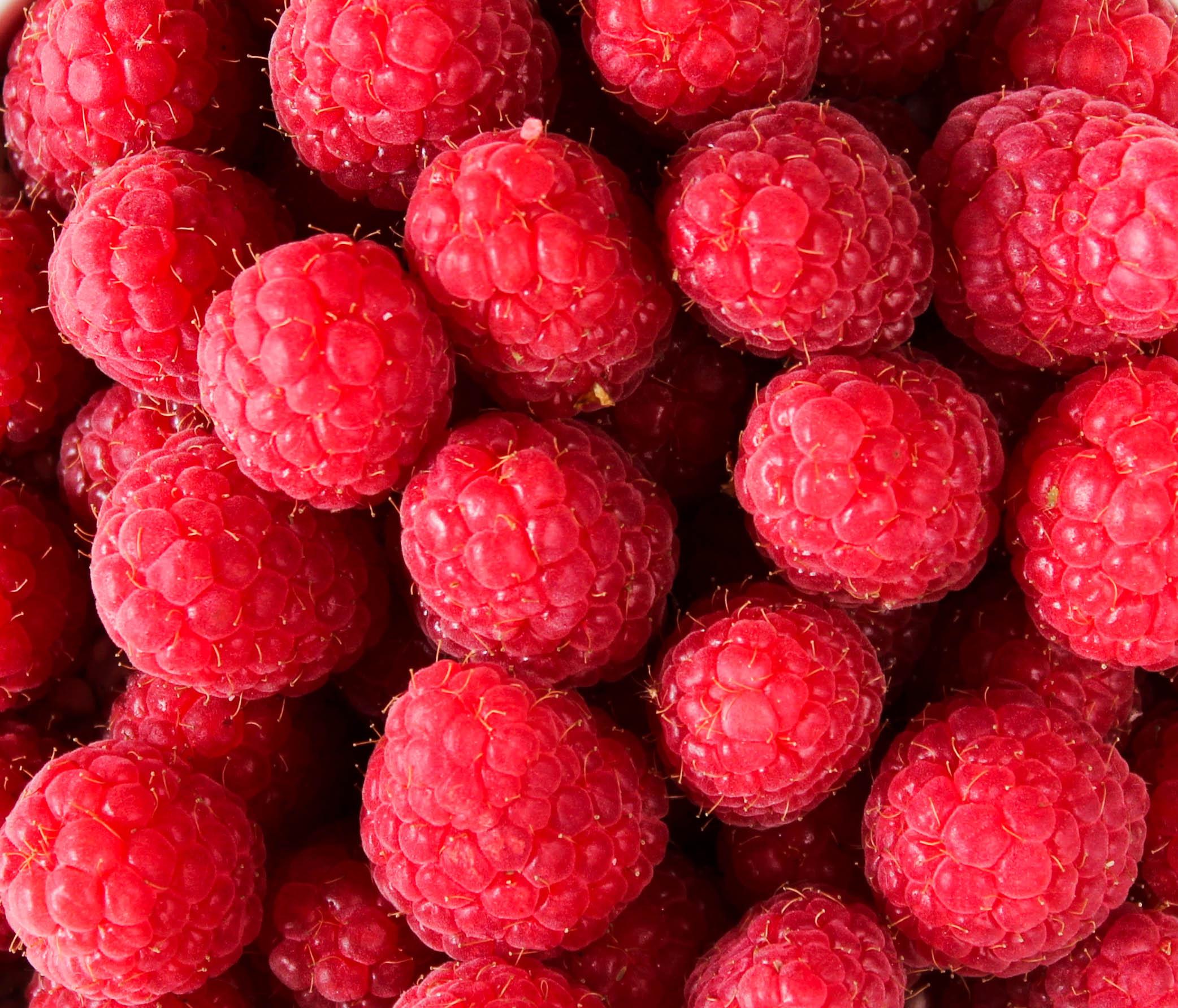 lamponi ricetta per gustarli in cucina foto frutti