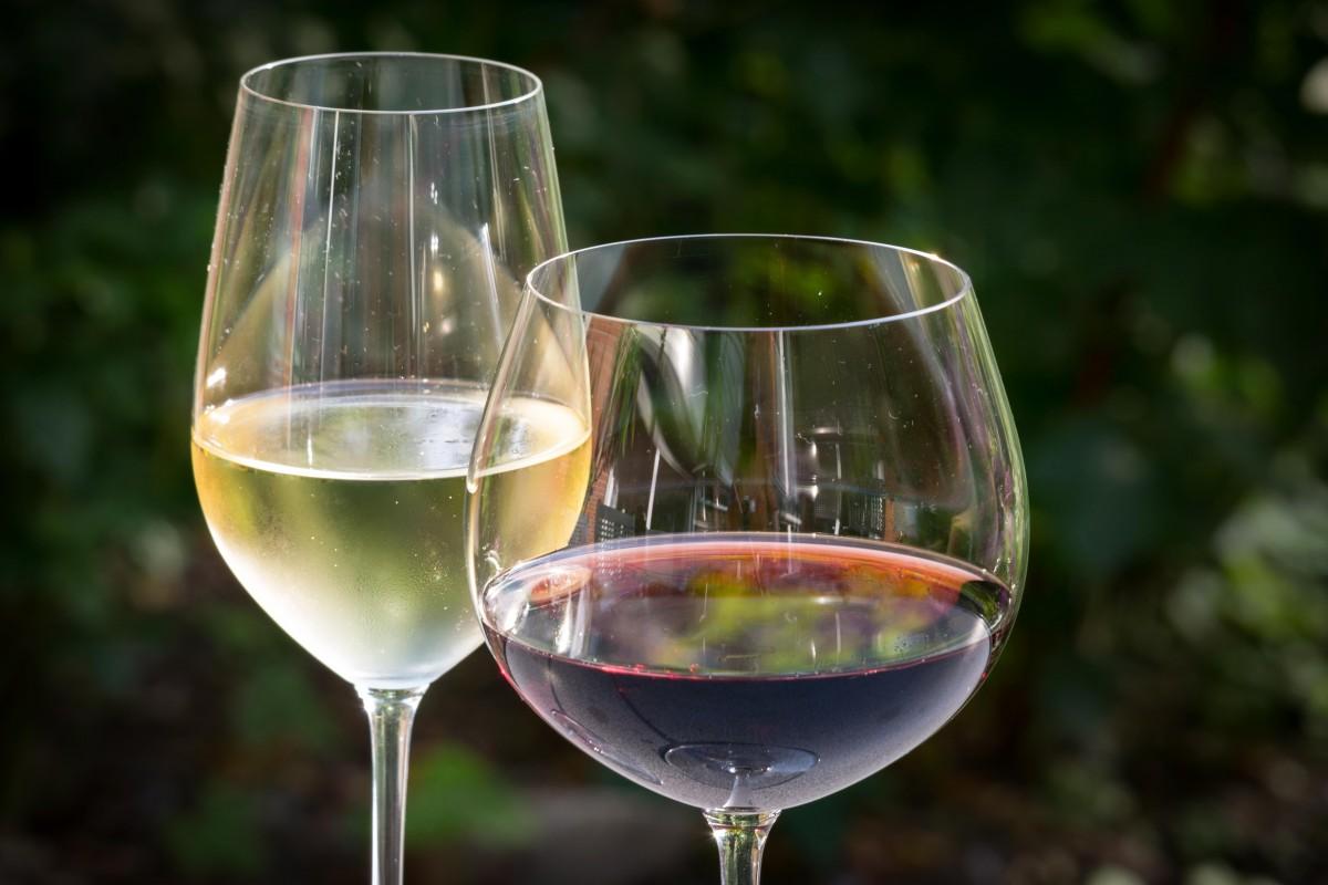 vini veronesi calice di bianco e rosso
