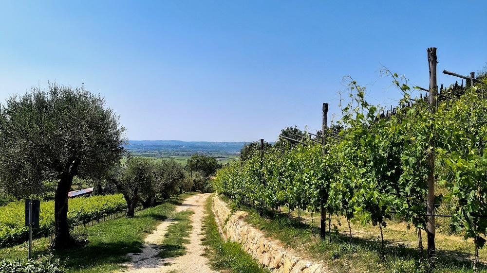 osa fare in Valpolicella, sentiero per San Giorgio Ingannapoltron